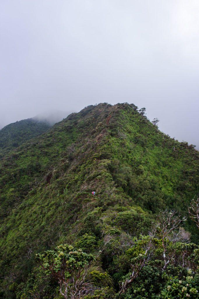 beautiful-moanalua-ridge